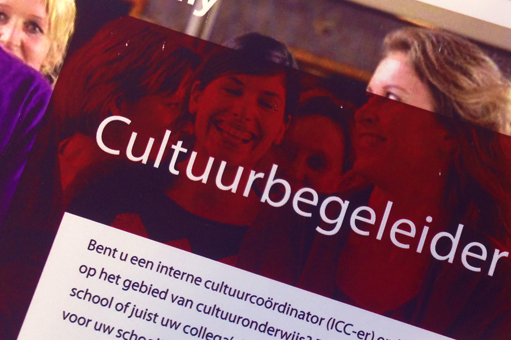 Post-HBO Cultuurbegeleider